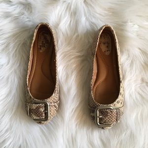Fossil Snake Print Buckle Flats